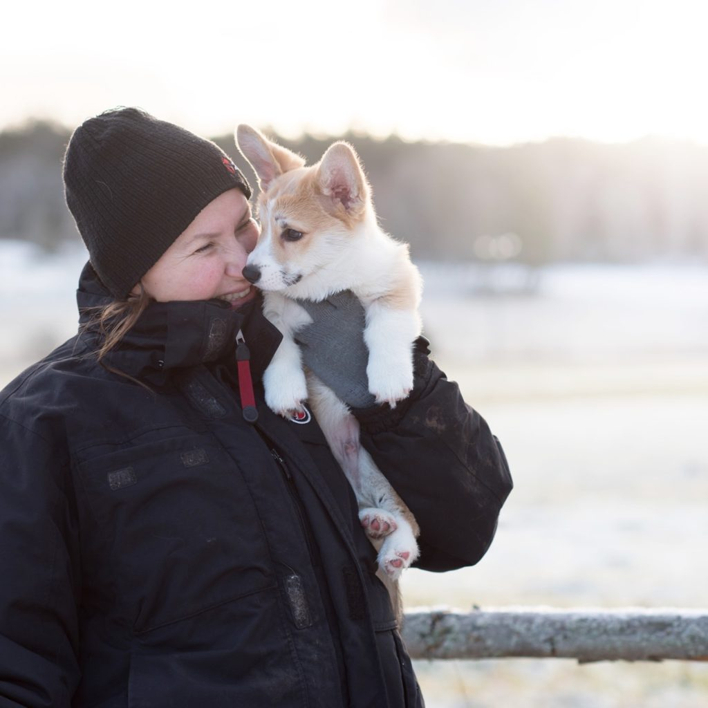Hundfotograf Kickan Nikolic. Hundfotograf i Stockholm